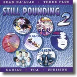 Various Artists - Still Pounding Vol 2